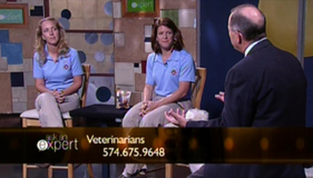Veterinarians Photo
