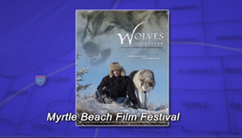 Myrtle Beach Fim Festival in Niles Photo